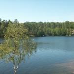 Bergsjön 1
