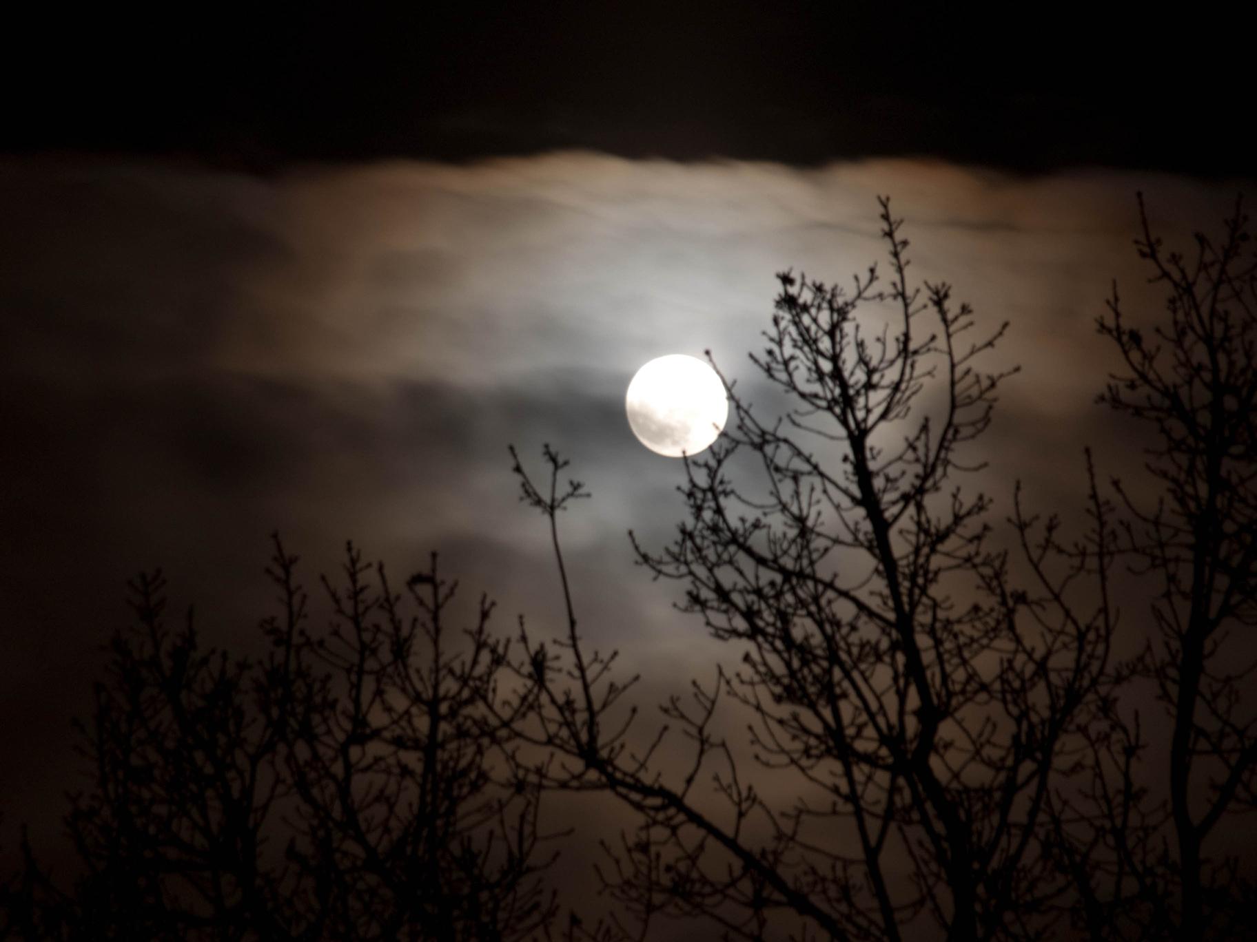 Månfotografering