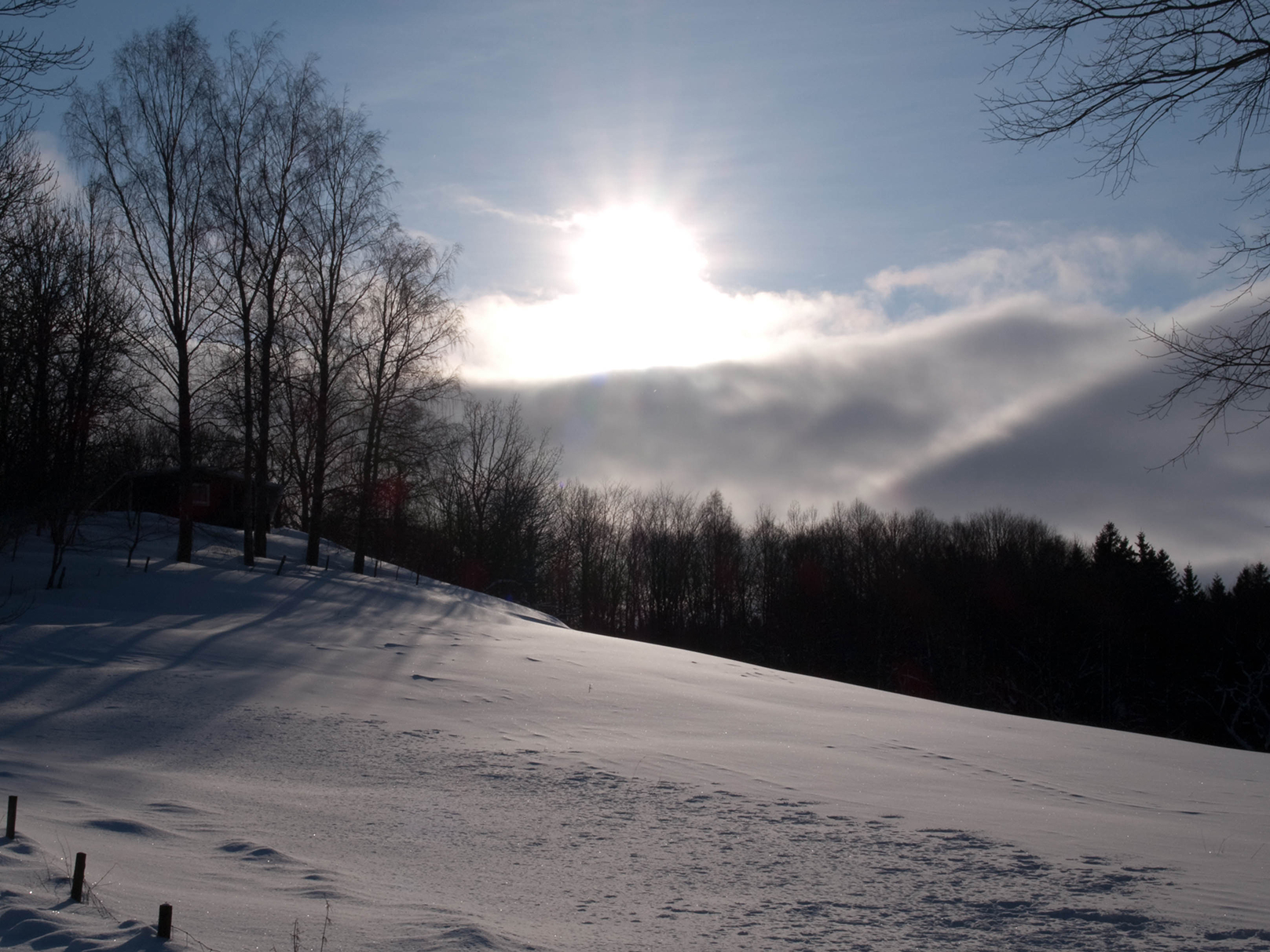Fler bilder på snön