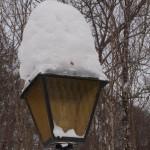 Vinter i Varnhem 6