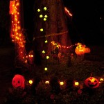 Halloween Lights 2010-10-20 1