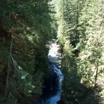 Lynn Canyon 2010-07-07
