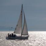 Sailors 2010-06-08