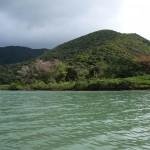 Grön flod