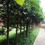 1700-talsträdgård 3