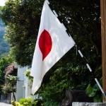 Andra väveribesöket: japansk flagga