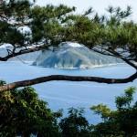 Utsikt över bergen på andra sidan vattnet genom en trädkrona