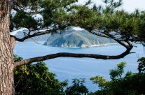 Amami-Ôshima – ett återbesök