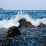Vilda vågor