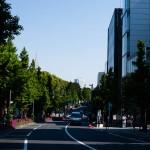 Större gata med lummiga träd, Tokyo