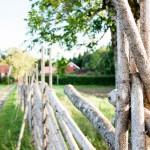 Med gården som bakgrund
