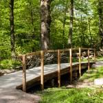 Bro över bäck