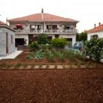 Plantering framför hus i Zadar