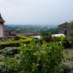 Utsikt från vingården