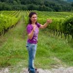 Guiden på vingården