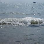 Vågor på Viareggios strand